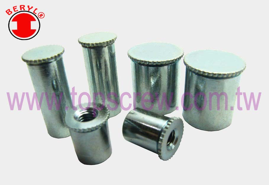 ALUMINUM – TOP SCREW METAL CORP